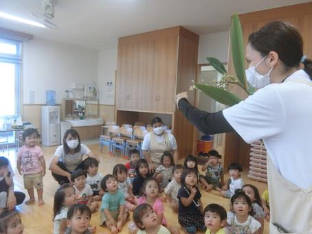 6月3日(木)月桃に興味津々の子どもたち♡