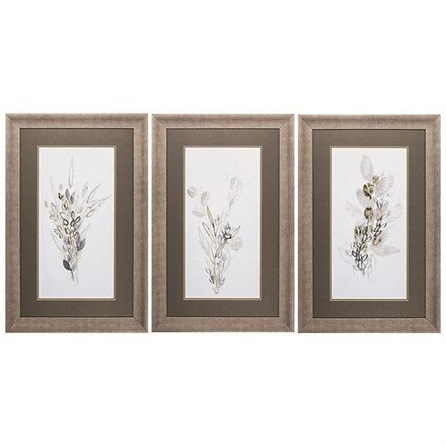 Botanical Whimsy Set of 3