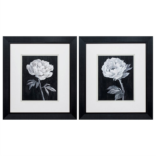 Black & White Flowers Art Set of 2