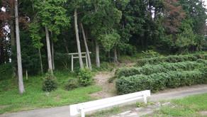葦間山古墳ー茨城県筑西市徳持の前方古墳