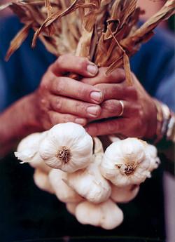 Garlic hands Gift cards