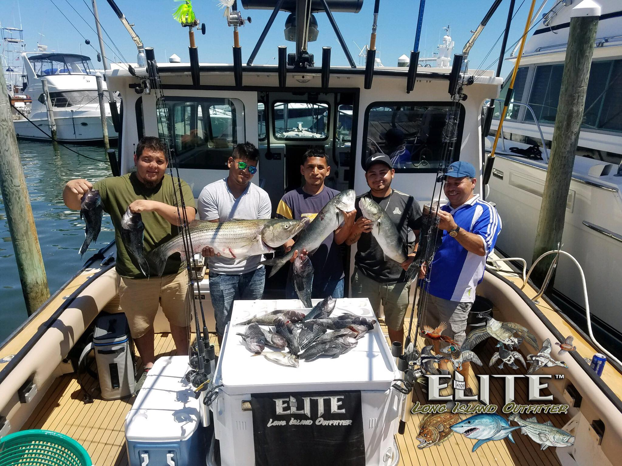 Elite Long Island Outfitter