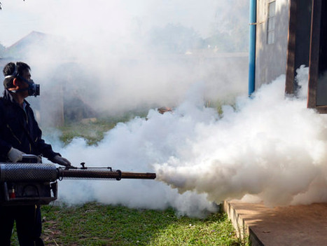 Global Health Security: The Fight Against Malaria Must Continue
