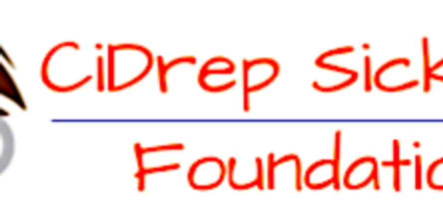 CiDrep SickKids Foundation 1st Annual Black-Tie Dinner and Ball