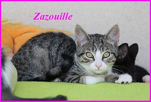 Zazouille.jpg