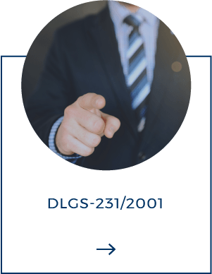 DLGS-231.png