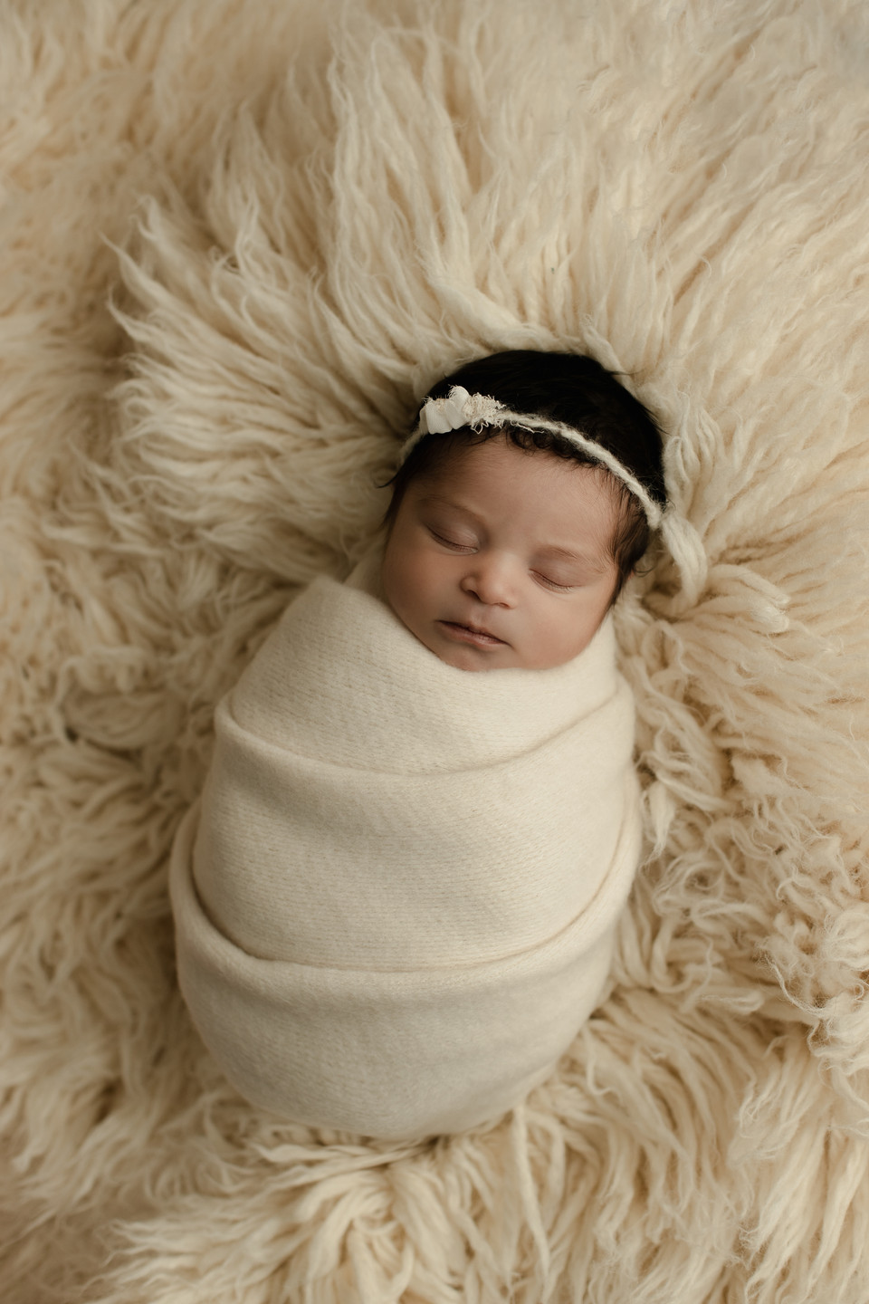 studio photographer, regina newborn photographer, newborn photography, balgonie, saskatchewan