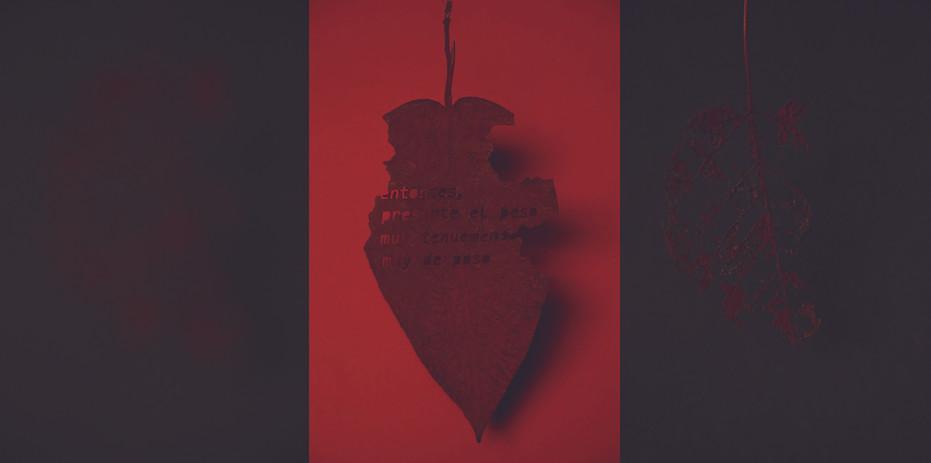 Andrea Marín Título: Inmanencia. Serie, pieza 1,2 y 3. Técnica: Serie, Fotografía digital C-Print. Dimensiones: 39x84cm (Total de las 3 fotografías) Año: 2019