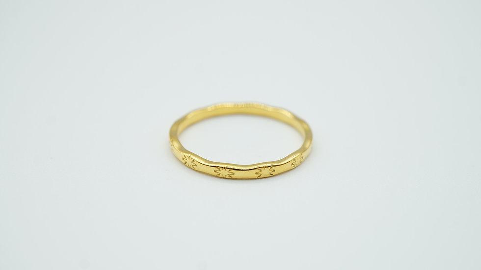 adria ring