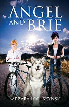 Young adult novel Angel and Brie