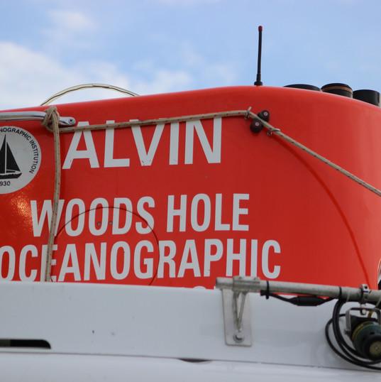 AlvinLid1.jpg