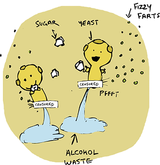 2_-_Our_Friend_Yeast[1].png