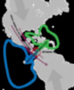 Isthmus_of_Panama_(closure)_-_Speciation