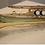Thumbnail: Timbre Lab Bb Cornet TL-C700