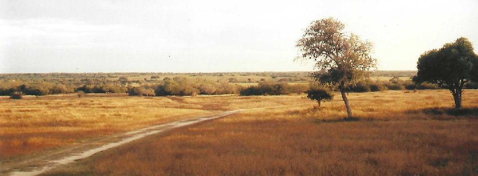 Land pic 1.jpg
