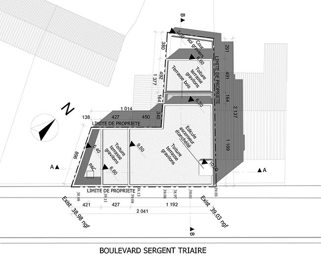 A01 Plan de masse pro.jpg