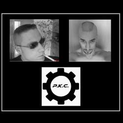 PKC-Logo-september09-mit neuem Zahnr.1