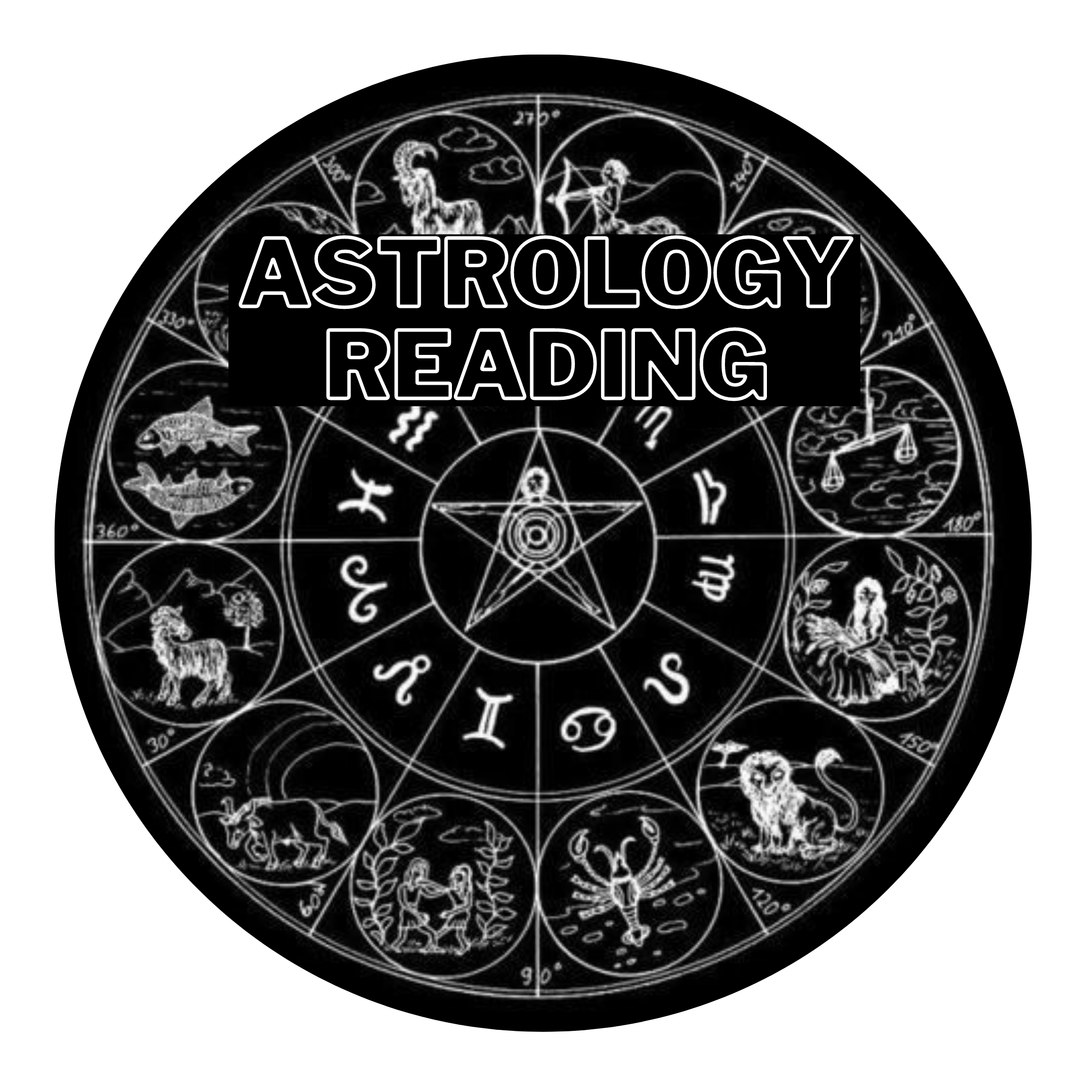 Personal Astrology Reading - 90min