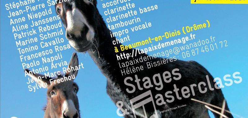 Stages Saint-Pierre 2013 - La Paix Déménage