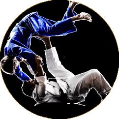 judo-adulto-box.png