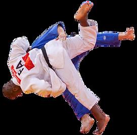 judo-adulto.png
