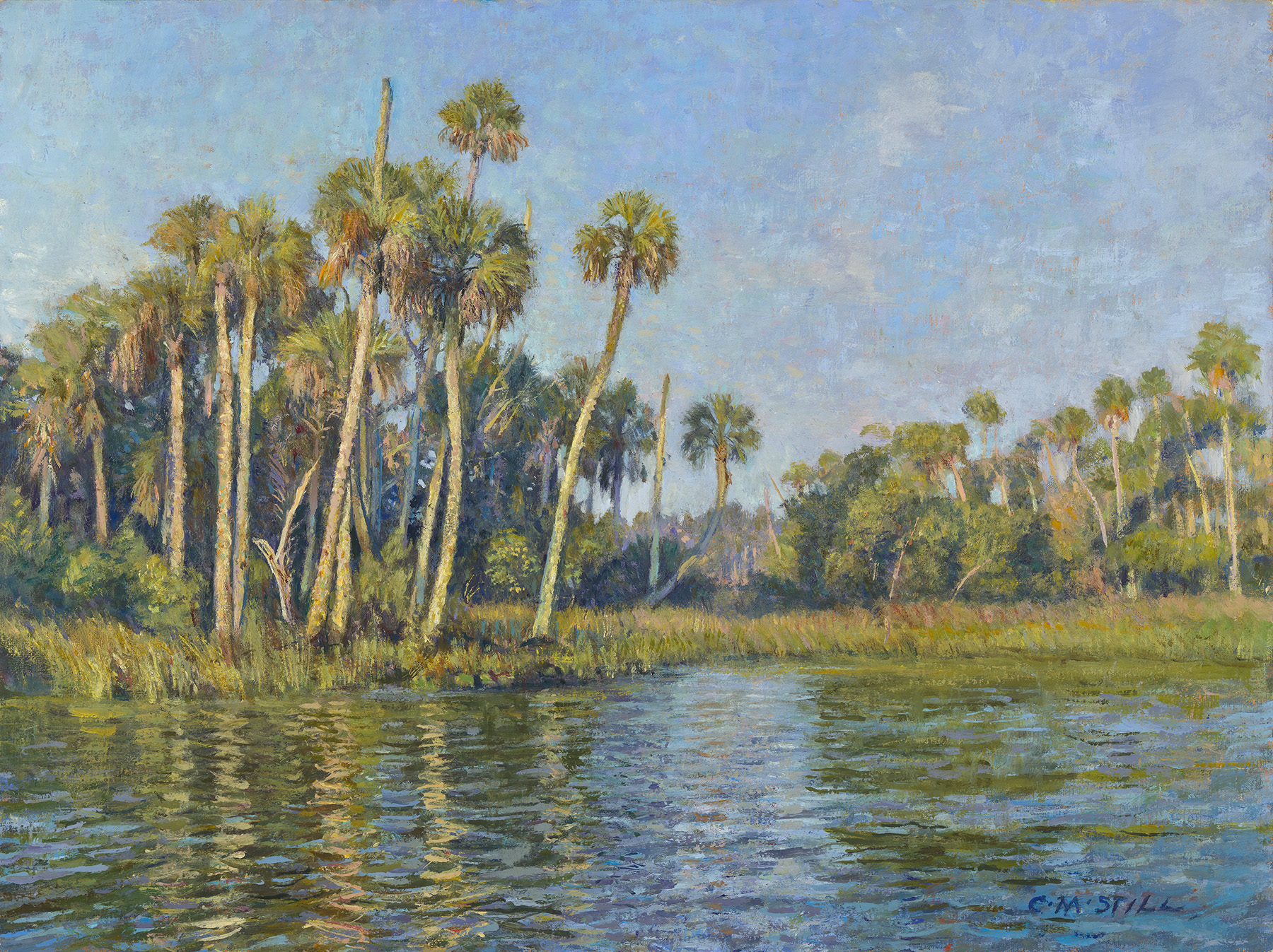 Crystal River Palms
