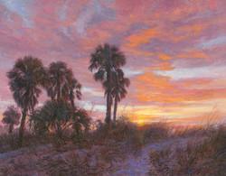 Caladesi Sunset