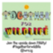together for wildlife png square flyer f
