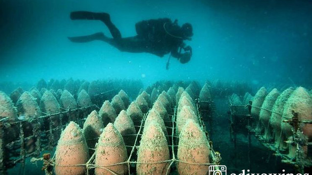 Wine Diving-A Croatian Exclusive