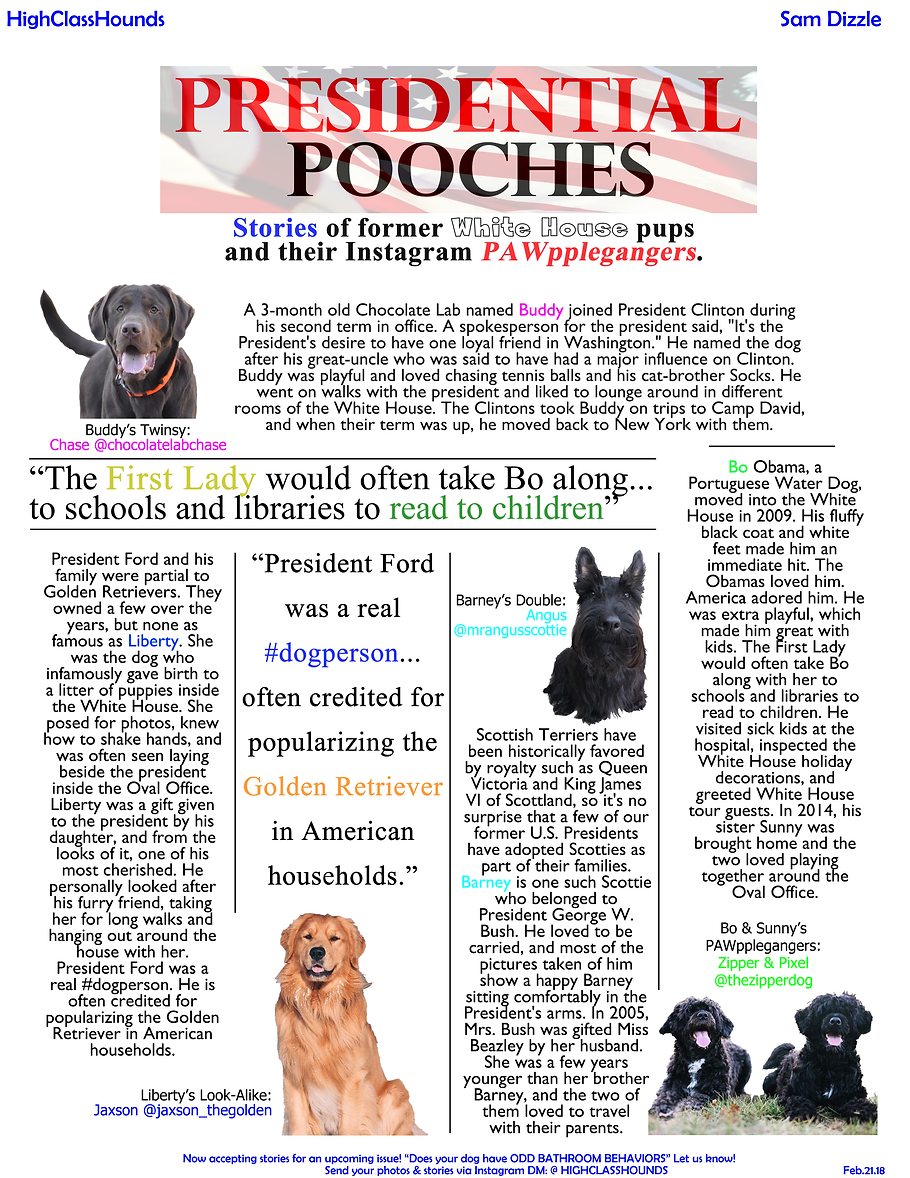 presidential pooches.png