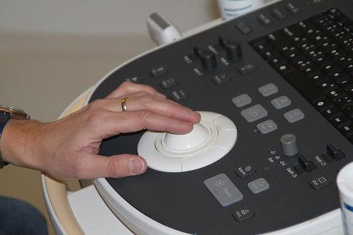 Cursus transvaginale echografie