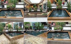 Le bassin et les canards d'ornements