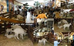 Le parc des chèvres