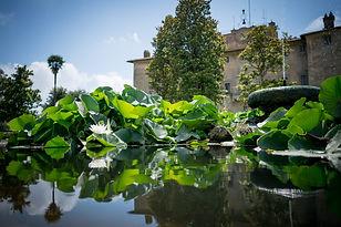 Castello-San-Giorgio-Maccarese.jpg