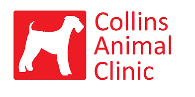 Collins Animal Clinic
