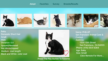 Feline Finder Apple TV