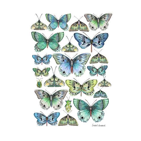 Aqua Butterfly Kaleidescope Art Print