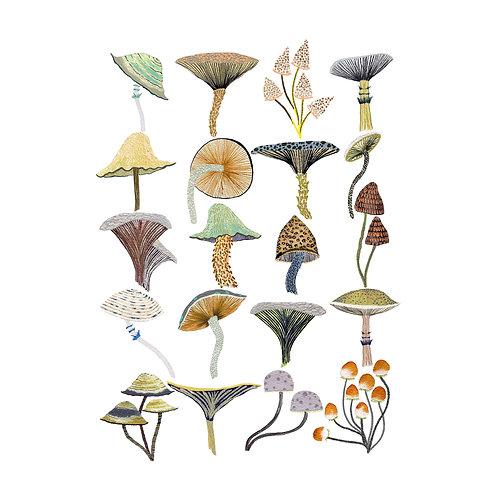 Golden Mushroom Art Print
