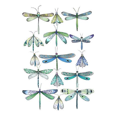A3 Print - Dragonflies