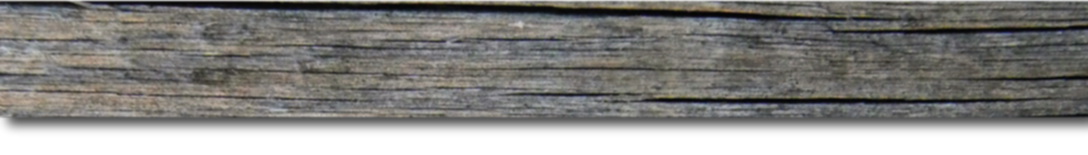 driftwood strip-01.png