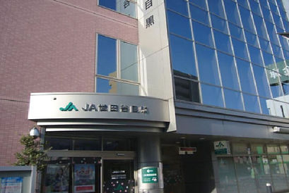 airplot-jirei12 (1).jpg