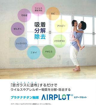 airplot-r208-738x1024 (1).jpg