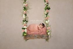 Isabella pink swing