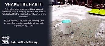 Shake the Habit.jpg