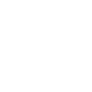 ITS_Logo_branco_vertical.png
