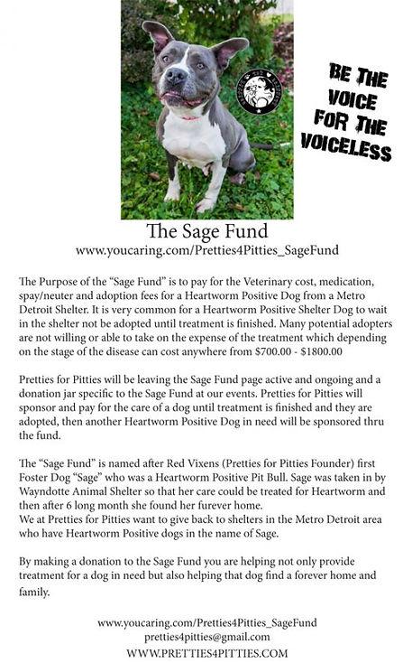 sage_fund_flyer-e1515898515378.jpg