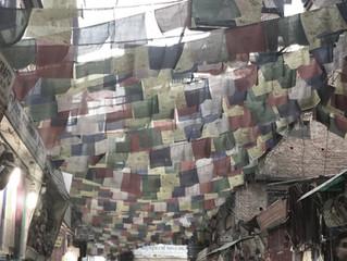 インド・ネパール買い付け。