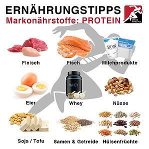 ernaehrungstipps_makro_protein.jpg