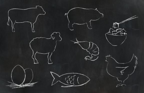 Chalk Animals