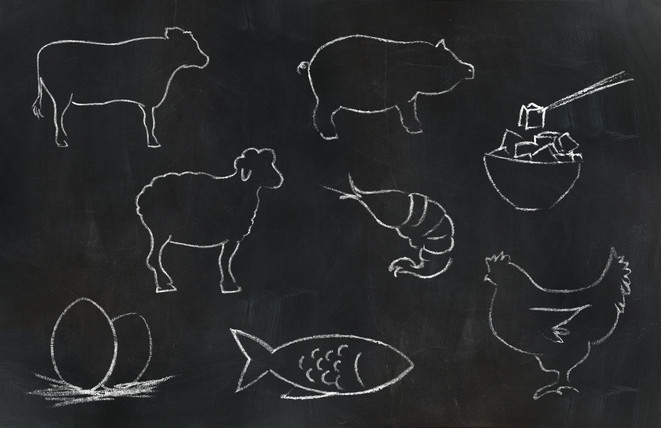 Chalk Animals